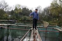 杭州人心心念念的西湖漁亭終于開了 春筍步魚也來了