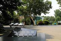杭州博物館及西湖博物館今起有序開放 需實名預約