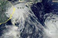 """不信谣不传谣,台风天给出你的""""正能量"""""""