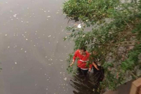 宁波一30岁女子跳河轻生 特警紧急跳河救援(图)