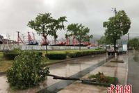 宁波台风天里的守岛人:逆风而行汇聚最美风景