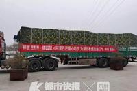 太暖了 浙江游泳名將傅園慧捐贈20噸蔬菜送往湖北