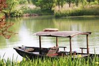 杭州西溪濕地今起預約游覽 每天最多24000人