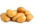 发芽土豆不能吃吗