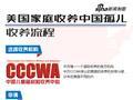 美国家庭收养中国孤儿-收养流程