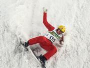2014年6月28日美元汇率2015-2016自由式滑雪空中技巧世界杯北京站_新浪专题日圓符號