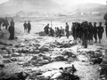 麻木的清朝平民:甲午战争刺痛国人的图片