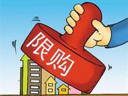 """海南商品住宅全域限购政策解读:""""量身定制""""保障本地居民住房需求"""