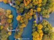 西湖的秋天
