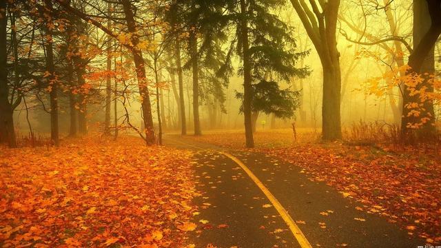 秋天是一年中最理想的出游季节; 因为航班比较便宜,目的地也不那么拥挤。