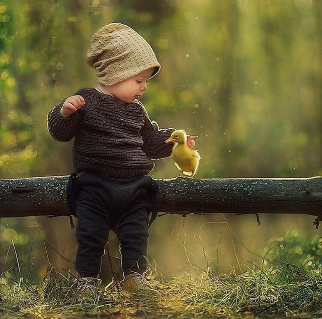最近在国外的一个社交网站上有这样一组儿童照片蹿红,拍摄这组照片的摄影师用镜头去讲述了一个现实中的童话故事。也让人真切的感受到人与动物之间的灵性。