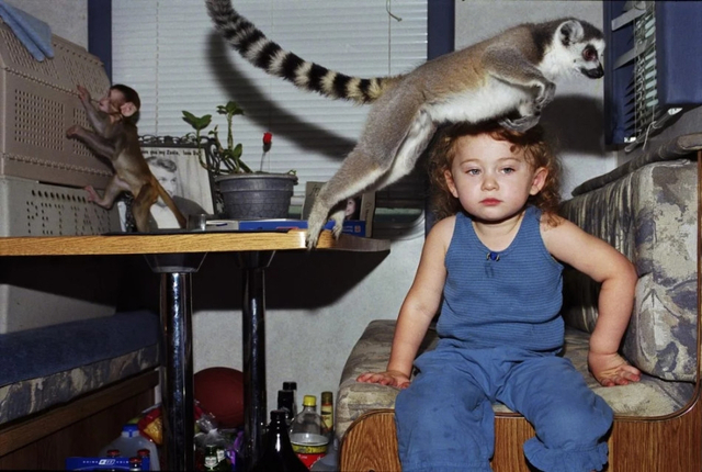 """""""艾米莉亚和动物""""(Amelia and the Animals)是摄影师Robin Schwartz记录他的女儿Amelia和她的野生动物朋友之间的友谊。 Amelia从三岁开始就一直以各种野生动物生活在一起,直到现在她已长成一个亭亭玉立的少女。"""