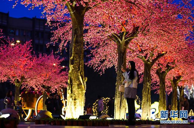 """春节临近,5日晚,重庆三峡广场迎春灯饰正式亮灯,""""宫灯、屏风、大鼓""""等中国元素的灯饰五光十色,200余颗仿真桃树营造出""""三生三世,十里桃花""""的灯海,吸引不少市民拍照留念。图为市民在灯饰下拍照留念。"""