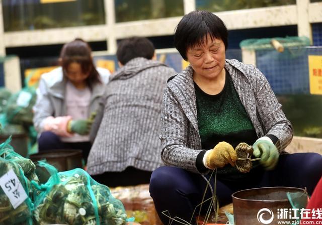 10月12日,在杭州凤起路一家大闸蟹专卖店里,60岁的郭玉花正在捆绑大闸蟹。郭玉花是阳澄湖当地人,已经做了9年的捆蟹工,像她这样的熟练工一分钟捆三只,平均一天能捆3000只,每个月的工资基本都在万元以上。