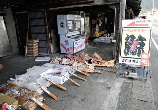 当地时间2019年1月10日,日本长崎县东彼杵町(Higashisonogi),鱼肉批发商在当地鲸鱼肉批发市场采购。 2018年12月26日,日本宣布退出国际捕鲸委员会(IWC),将于今年7月起重启商业捕鲸。而东彼杵町自江户时代起就是日本有名的捕鲸基地。