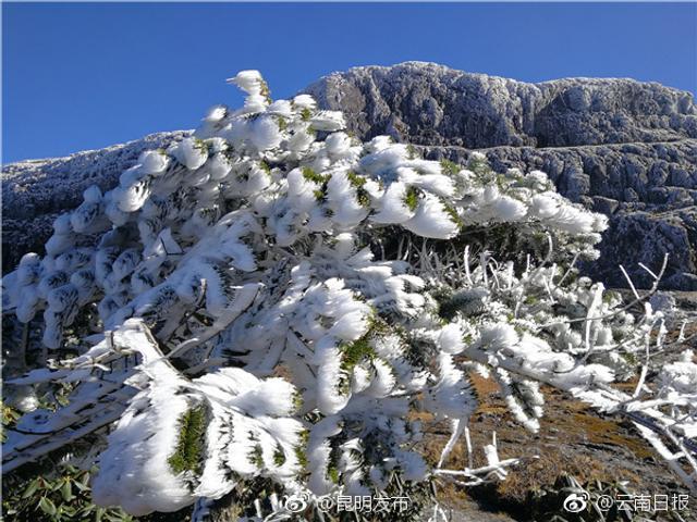 """近日早晨,洁白的雾凇为云南轿子雪山披上一层白纱,在蓝天白云的映衬下,轿子雪山如""""冰美人""""般楚楚动人。"""
