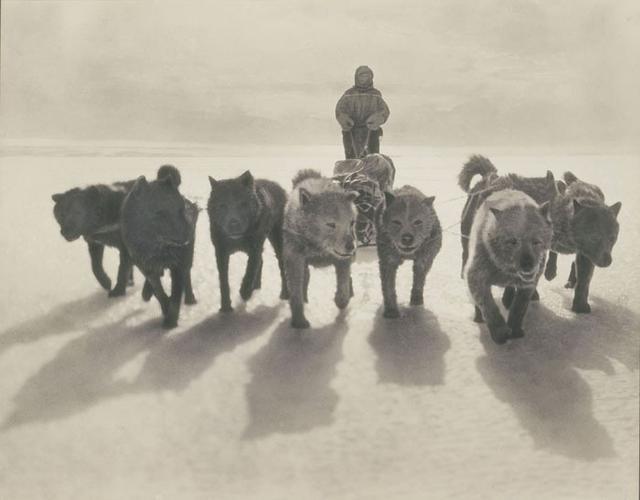 一百多年前,澳大利亚南极考察队拍下的珍贵画面。
