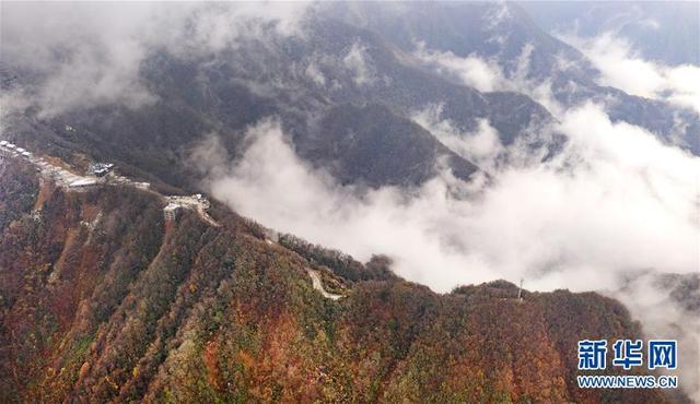 """11月8日无人机拍摄的鬼谷岭国家森林公园。主峰鬼谷岭被五条苍劲绵延的山脉托起、形成了""""五龙捧圣""""的奇特景象。新华社记者陶明摄"""