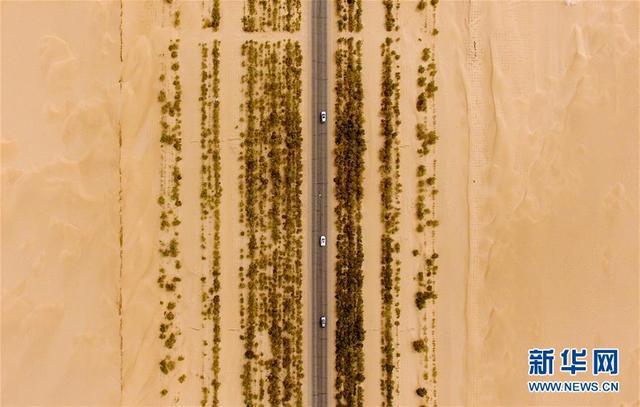 汽车在第一条沙漠公路上行驶(6月12日无人机拍摄)。新疆塔克拉玛干大沙漠是我国最大的沙漠,也是世界第二大流动沙漠。 1995年,首条塔克拉玛干沙漠公路全线通车,这条世界上穿越流动沙漠最长的等级公路,北起西气东输起点轮南,南接和田地区民丰县,全长522公里,打通了南疆经济社会发展和塔里木油气资源勘探开发的交通命脉。 2008年,新疆第二条沙漠公路建成通车,424公里纵穿塔克拉玛干沙漠西部,从北侧的阿拉尔市至和田地区和田市,将沙漠西北缘的阿克苏地区和西南缘和田地区连接起来。至此,两条平行于沙海之中的公路将塔克拉玛干一分为三,南北疆公路距离缩短500多公里,成为南北疆运输沟通的捷径。 新华社记者 赵戈 摄