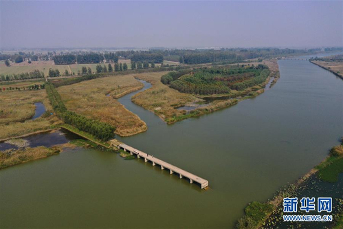 江苏徐州黄河故道变身湿地公园