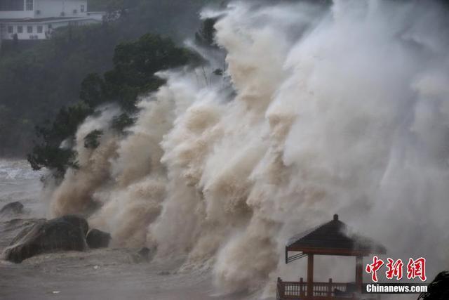 """7月11日,受今年第8号强台风""""玛莉亚""""的影响,浙江温州苍南渔寮金沙滩海域掀起巨浪。中新社发  柯宗清 摄"""