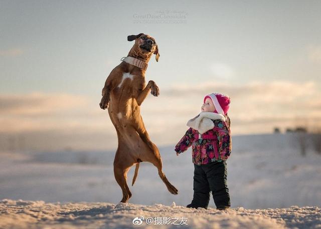 孩子与狗狗之间的友谊。  Andy Seliverstoff