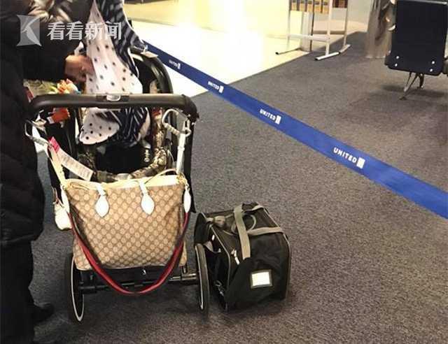 据英国《每日邮报》13日报道,当地时间12日,一名乘客带着自己刚满10个月大的法国斗牛犬乘坐前往纽约的航班,机舱工作人员坚持要将小狗放置在位于乘客头顶上方的行李架内,最终导致小狗意外死亡。