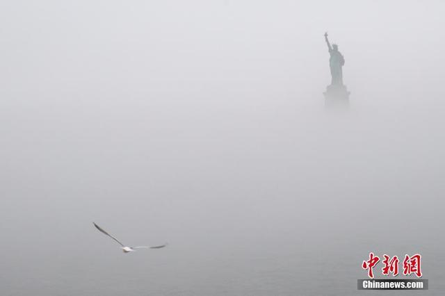 当地时间1月12日,纽约迎来降雨天气,从渡轮上望去自由女神像和飞鸟在雨雾中。 中新社记者 廖攀 摄