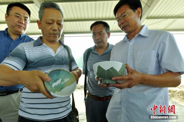 6月19日,在河北正定开元寺考古现场,来自中国文化遗产研究院、北京大学及河北省文物局等专家正在查看出土文物。