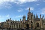 留学选择读冷僻专业和就业前景的利弊分析