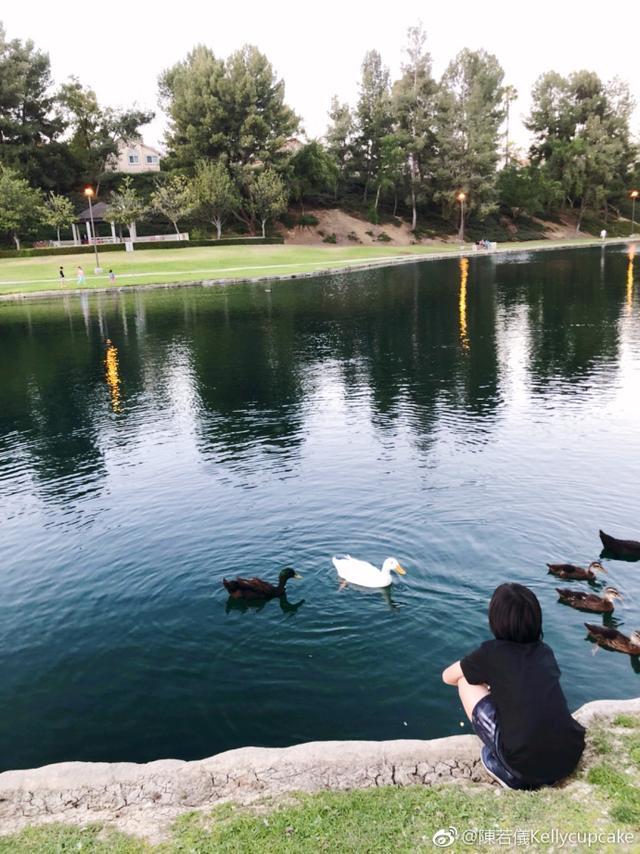 """新浪娱乐讯 6月14日,林志颖和陈若仪在自己微博上传儿子Kimi在公园玩耍的照片,并配文称:""""重游旧地,上次来黑米才4岁,没想到他还记得这些可爱的鸭子,他最爱小动物了!""""Kimi在水边与鸭子们玩耍,笑容满面,很是可爱。"""