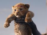 《獅子王》報名奧斯卡最佳男主等獎項 無真人表演