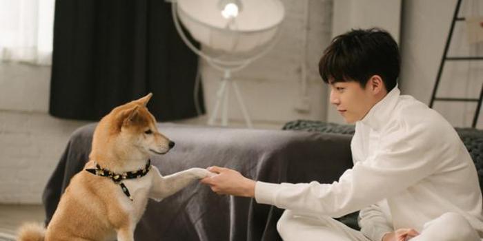 陳立農與狗握手喜迎財神 網友:有點想做那只寵物