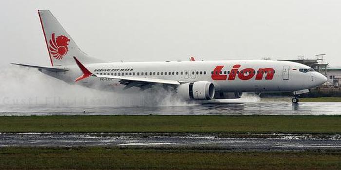 波音737Max空難后 美交通部設立專門委員會審查飛機