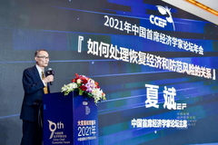 夏斌:如何处理恢复经济与防范风险的关系