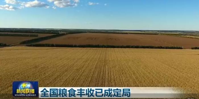 今年全國糧食豐收已成定局