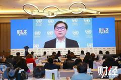 联合国贸发组织詹晓宁:可持续领域投资增幅远不足以填补资金缺口