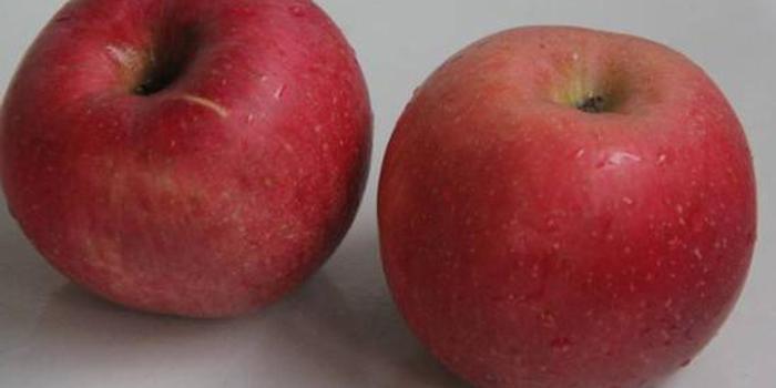 蘋果 終于降價了