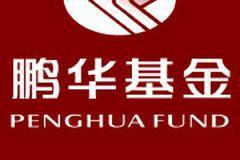 鵬華基金捐贈500萬元馳援抗擊新型冠狀病毒肺炎疫情