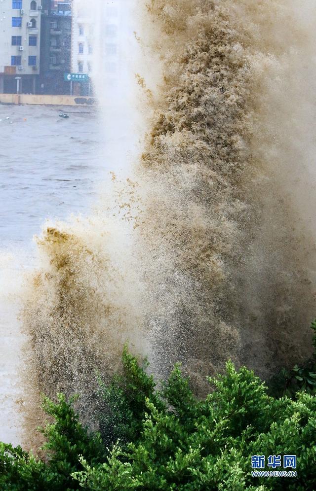 11日清早,新华网记者在福建宁德市霞浦县三沙镇直击台风。8时许,台风不断裹挟海浪冲击上岸,出现惊涛骇浪的惊险景象。新华网 肖和勇 摄