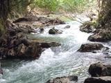 阿姜查禅师:静止的流水