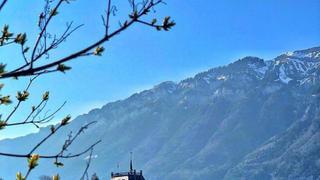 瑞士伊斯特瓦尔德 湖畔的仙境 .