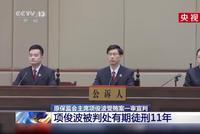 原保監會主席項俊波受賄案一審宣判:被判處有期徒刑11年(視頻)