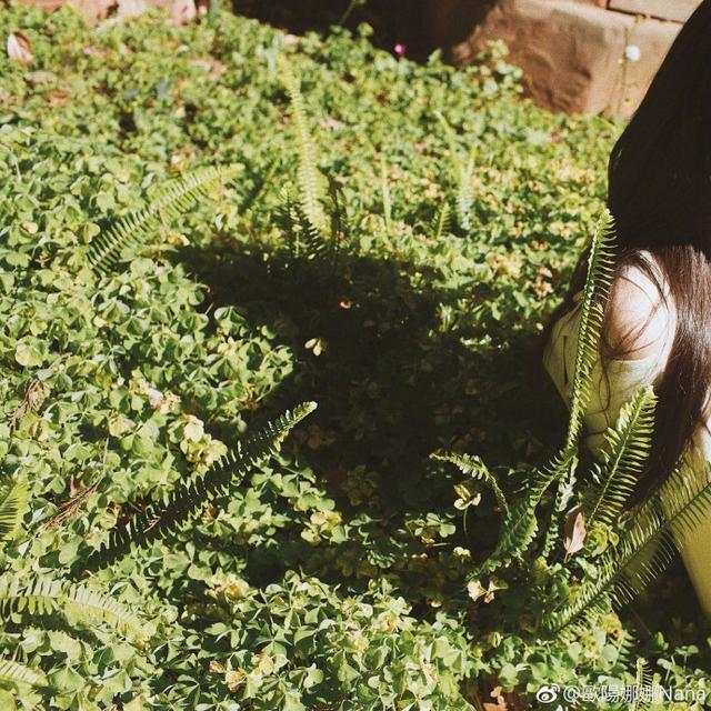 新浪娱乐讯 8月7日,欧阳娜娜在自己微博上传一组照片,照片中的她身穿灰色针织毛衣,内搭蓝色衬衫,留着齐刘海,看起来青春气息十足。她容貌姣好,十分清甜。