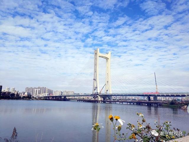 潮州大桥自2013年6月动工建设以来备受市民关注和期待。