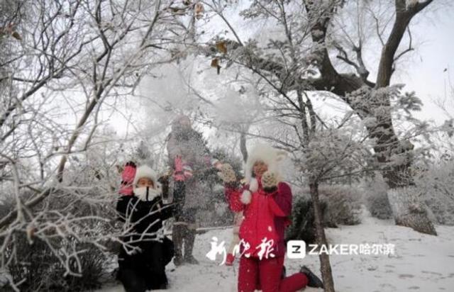 """3日清晨,许多晨练的市民都惊喜地看到,江畔河畔的树枝被霜花包着,冰城再次出现难得的 """" 雾凇 """" 美景。漫步在街头,欣赏着大自然馈赠的美景,让人流连忘返。冬天给了哈尔滨化冰雪为神奇的机会,更让中外游客不虚此行。(via新晚报)"""