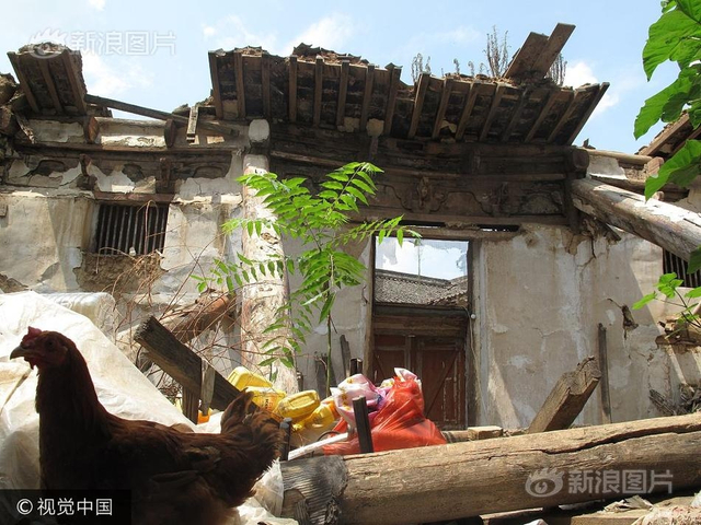 2017年8月15日,陕西商洛,柞水县凤凰古镇老街是文物保护单位,老街上建于清代年间的二郎庙,数次局部坍塌无人管理修缮,导致二郎庙正殿整体坍塌。如今,坍塌数年无人问津,这里成了周边居民养鸡场。