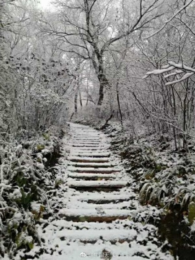 10月10日,北京迎来了雨雪天气。需要提醒的是,目前降雪主要出现在山区,平原地区未观测到降雪,所以,今天并不是北京2017年冬季的初雪日。