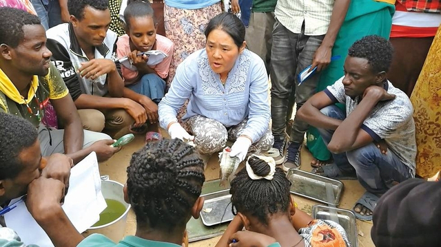 10月11日,还有5天时间,便又要启程去埃塞俄比亚了,湖南省水产科学研究所的水产专家何望教授开始准备行李。92岁老母亲需要照顾,独生女儿过几个月就要生宝宝,丈夫又要一个人在家……但想到还在那个国家等着自己的学生,这位53岁的女教授又充满了前行的动力。来源:三湘都市报