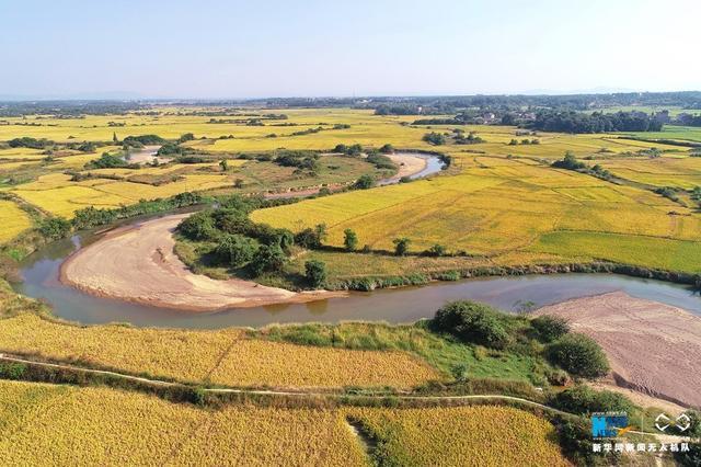 """10月8日,航拍江西省金溪县琅琚镇疏口村,一条呈""""S""""状的河流蜿蜒曲折伸向远方,河流两侧是金黄一片的万顷粮田。近年来,江西省金溪县多方筹措资金,持续加强小型农田水利基本建设,打通农田灌溉""""最后一公里"""",使原来的近万公顷""""望天田""""""""中低产田""""变为旱涝保收的""""高产粮田"""",有效提升了农业综合生产能力,促进了农业增效和农民增收。新华网杨益民 飞手:邓兴东 摄"""